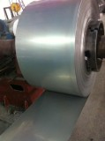 Stainless Steel Coil / Strip
